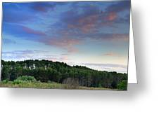 Forests Greeting Card