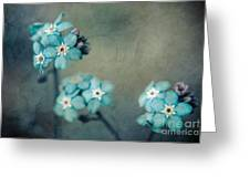 Forget Me Not 01 - S22dt06 Greeting Card