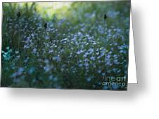 Forget Me-nots Greeting Card