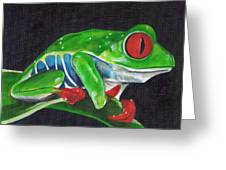 Forgotten Frog Greeting Card