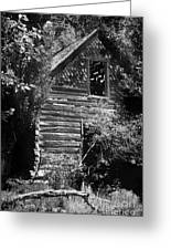 Forgotten Log Cabin Greeting Card