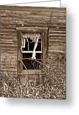 Forlorn Window Greeting Card