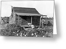 Former Slaves At Their Cabin Greeting Card