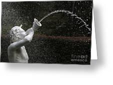 Forsyth Fountain Closeup Greeting Card
