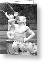 Forsyth Park Fountain - Black And White 1 2x3 Greeting Card