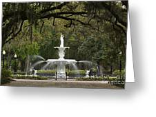 Forsyth Park Fountain - D002615 Greeting Card by Daniel Dempster
