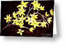 Forsythia Branches Greeting Card