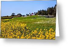 Fort Casey Spring Greeting Card