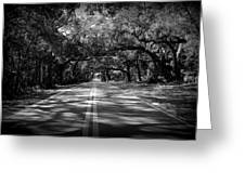 Fort Dade Ave Greeting Card