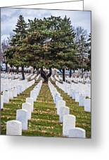 Fort Snelling National Cemetery Greeting Card
