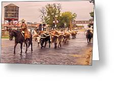 Fort Worth Cattle Drive Greeting Card