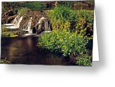 Fossil Creek Greeting Card