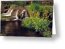 Fossil Creek Greeting Card