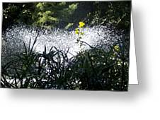 Fountain And Spring Flowers Greeting Card