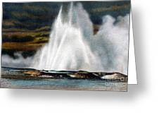 Fountain Geyser Yellowstone Np Greeting Card