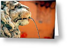 Fountain Lion Greeting Card