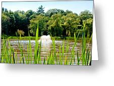 Fountain Side Greeting Card by Greg Fortier