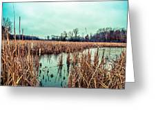 Four Corners Wetlands Greeting Card