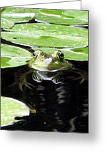 Four Eyed Frog Greeting Card