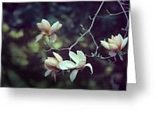Four Magnolia Flower Greeting Card
