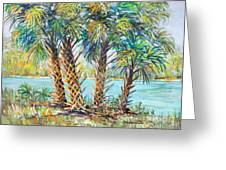 Four Palms Greeting Card