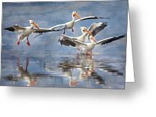 Four Pelican Landing Watercolor Effect Greeting Card
