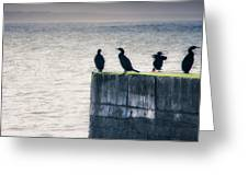 Four Point Lookout Greeting Card
