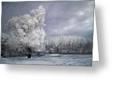 Four Seasons - Winter Greeting Card by Akos Kozari