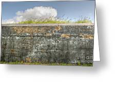 Fourt Moultrie Battery Jasper Wall Greeting Card