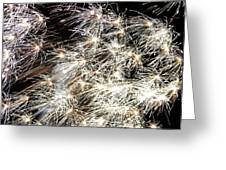 Fourth Of July Fireworks Greeting Card by Kim Bemis