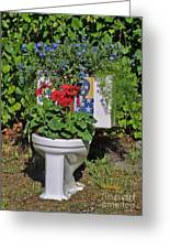 Fourth Of July Loo Greeting Card by Dodie Ulery