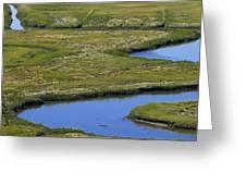 Fox Creek Marsh Greeting Card