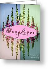 Foxgloves Times 4 Greeting Card by Margaret Newcomb
