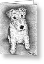 Foxterrier Greeting Card