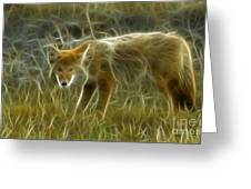 Foxy Loxy Greeting Card