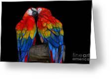 Fractal Parrots Greeting Card