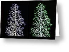 Fractal Seasons - Inverted Tetraptych Greeting Card