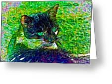 Fractalias Feline Greeting Card