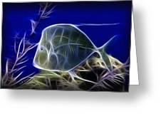 Fractalius Aquatic Fish Greeting Card