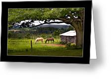 Framed Greeting Card by Don Powers