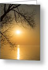 Framing The Golden Sun Greeting Card