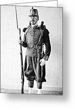 France Grenadier, 1860 Greeting Card