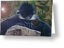 Francois's Langur Greeting Card