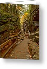 Franconia Notch Flume Gorge Boardwalk Greeting Card