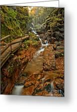 Franconia Notch Lush Greens And Rushing Waters Greeting Card