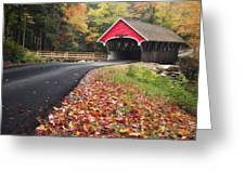 Franconia Notch State Park Greeting Card