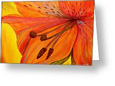 Freckles On Orange Greeting Card