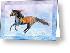 Da114 Free Gallop By Daniel Adams Greeting Card
