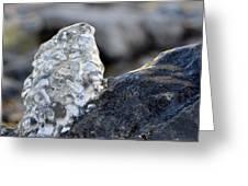 Freeze Gurgling Water 2 Greeting Card