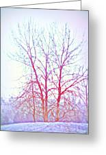 Freezing Cold Feet In Peace Greeting Card